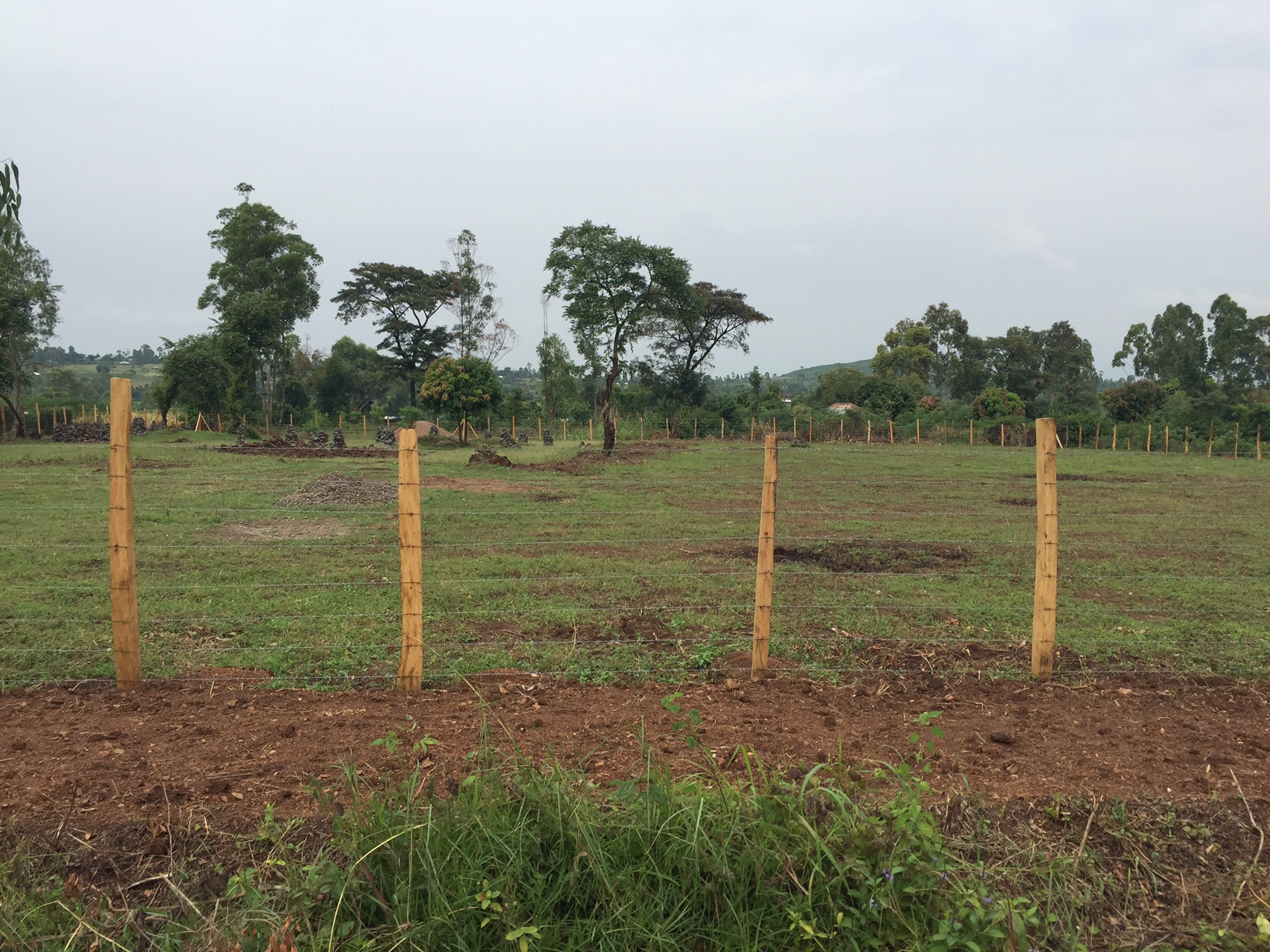 Land purchased for building of well for clean water and aquaponics